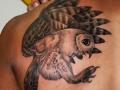 owl50fc990506dfb