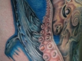 bluewhale-562x1024