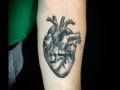 heart-and-hebrew