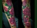 again-roses