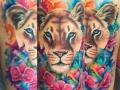 wc-Lioness