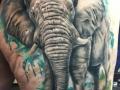 wc-elephant