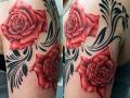 rosess1
